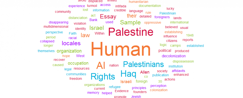 Palestine for Human Rights photo